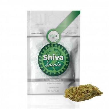 Shiva sacrée - Fleur CBD 1g