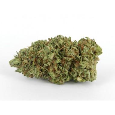 AMNÉSIA HAZE - 10% CBD