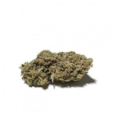 SKUNK – Fleur de CBD 1G