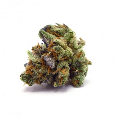 Fleur CBD – BLUEBERRY 1G